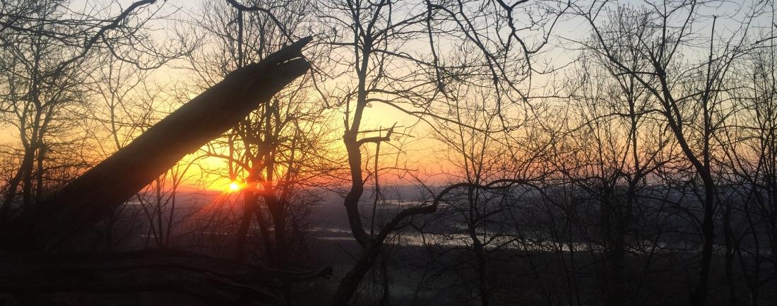 Tussey Sunrise